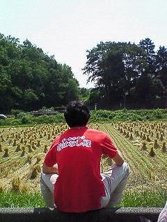 見渡すかぎりの山と畑。広島牛☆