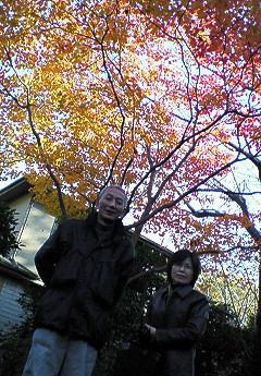 親父とお母んと秋の空