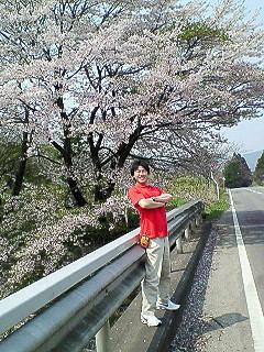 桜満開☆裸全開