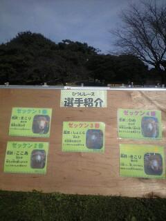 羊レース【こどもの国記念】