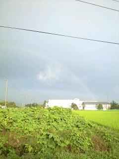 やっぱり、がんばったら虹