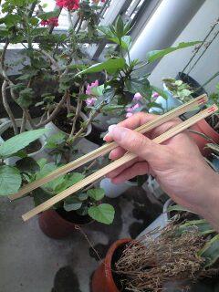 竹でつくったmy箸