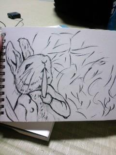 俺、兎描く。