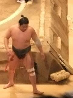 相撲と慶さん外人さん