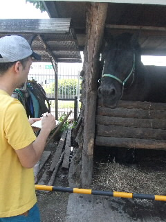 馬が合う〜石井聖岳[牡馬]〜