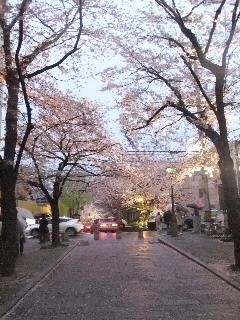 外国人ツアーに参加@京都