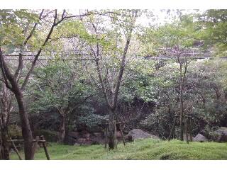 宮崎県えびの高原へ